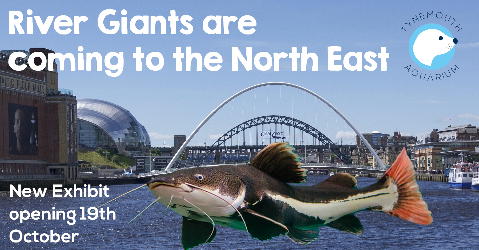 Picture of a river giant on the river tyne